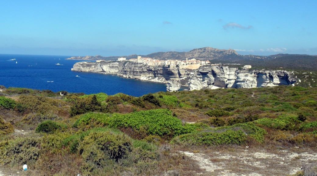«Citadelle de Bonifacio», photo de Paola79 (page does not exist) (CC BY-SA) / rognée de l'originale