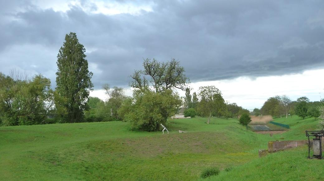 """Foto """"Wissembourg"""" von Immanuel Giel (CC BY-SA)/zugeschnittenes Original"""
