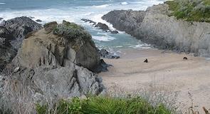 Plaža Barricane