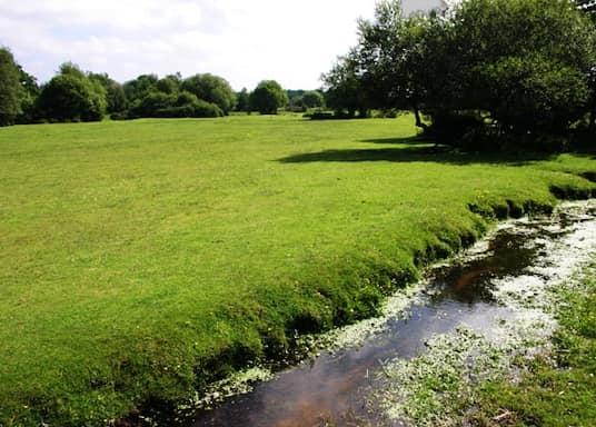 Burley, Wielka Brytania