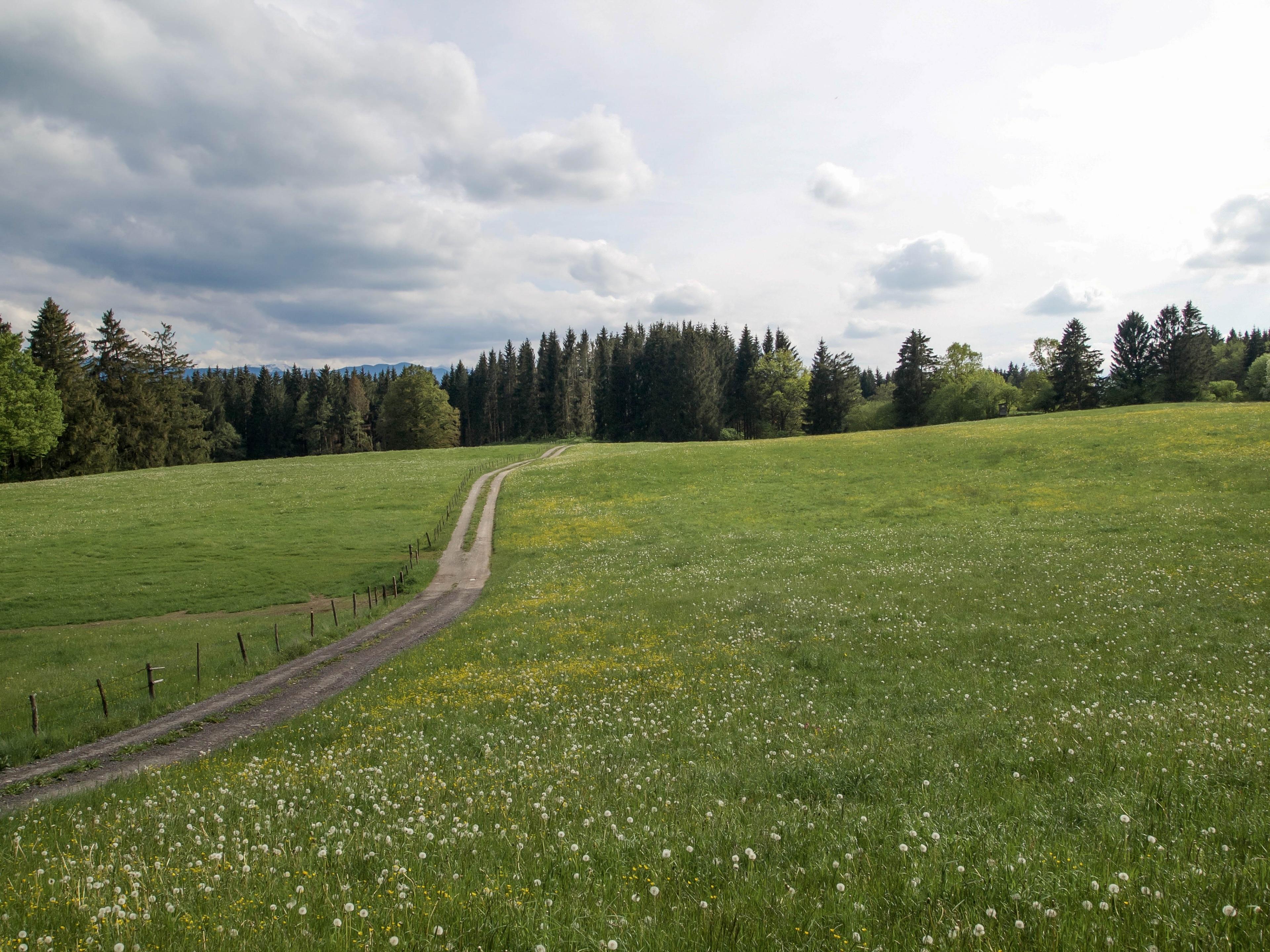 Peiting, Bayern