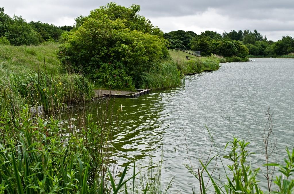 Blackleach Country Park, Manchester, England, United Kingdom