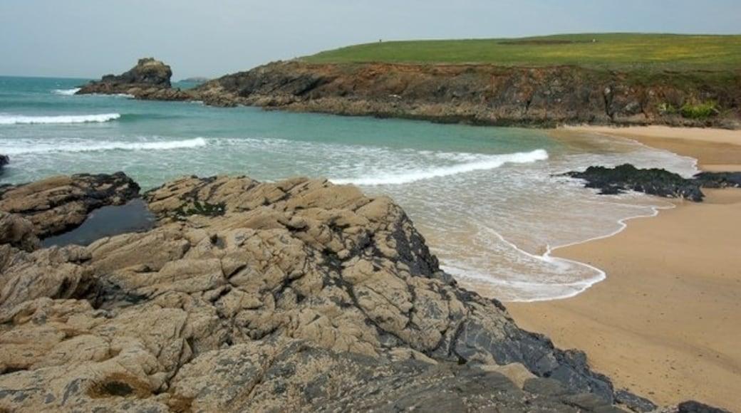 "Photo ""Trevone Bay Beach"" by Mari Buckley (CC BY-SA) / Cropped from original"