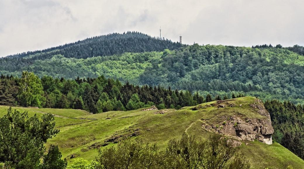 """Foto """"Herzberg am Harz"""" von Boris Gonschorek (CC BY)/zugeschnittenes Original"""