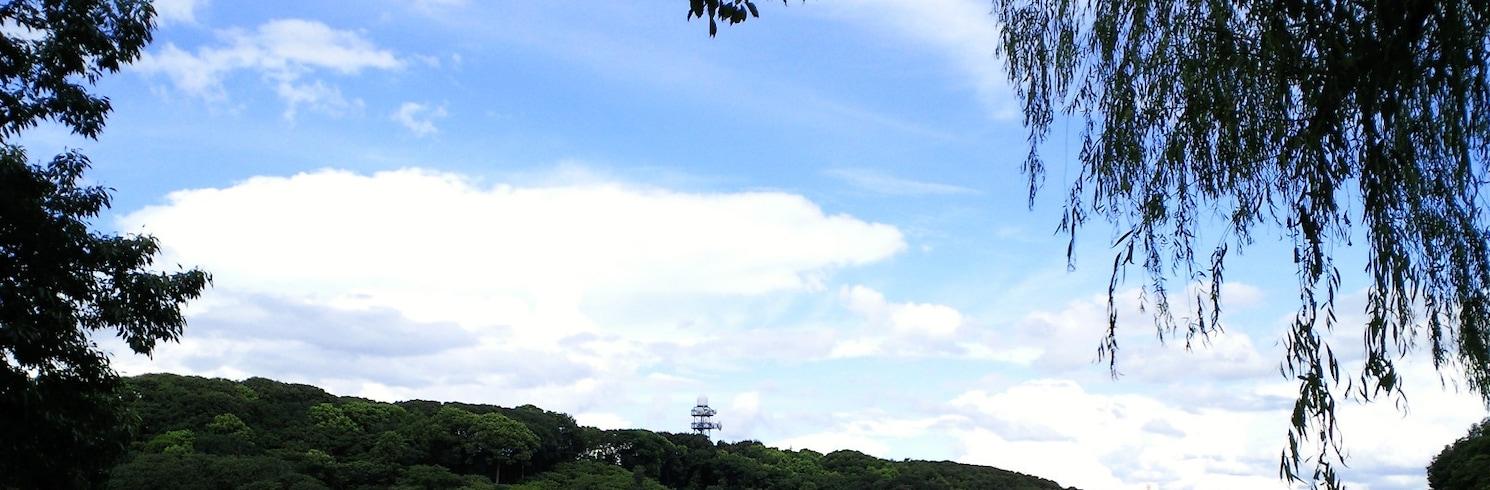Kyotanabe, Japão