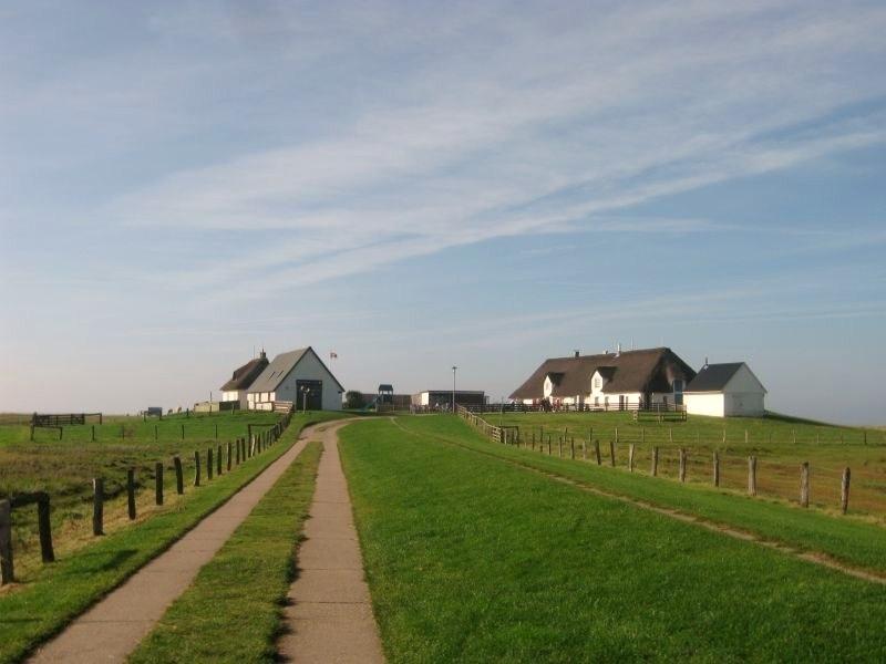 Reussenkoge, Schleswig-Holstein, Germany