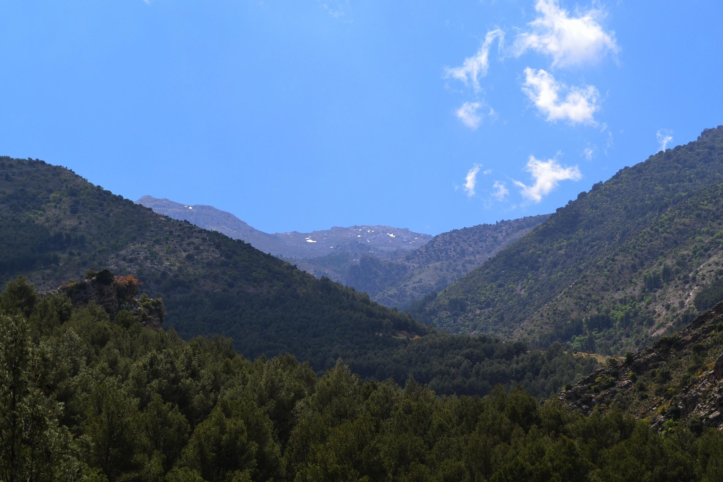 Bedmar y Garciez, Andalusia, Spain
