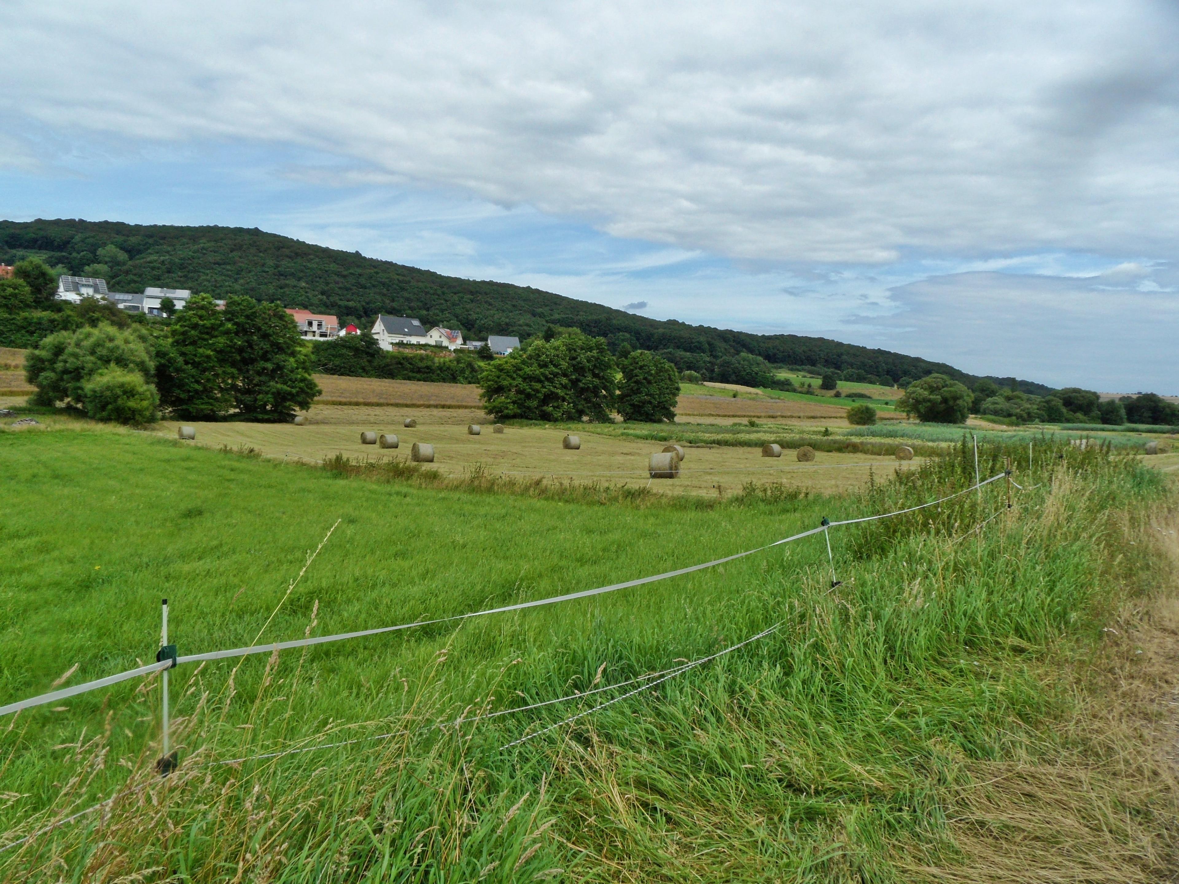 Weilerbach, Rhineland-Palatinate, Germany