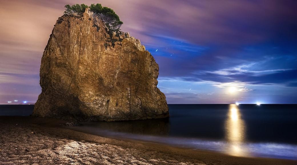 "Foto ""Strand Playa de Pals"" von Perdidonlspacio C Padrós (CC BY)/zugeschnittenes Original"
