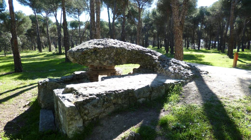 «Las Rozas de Madrid», photo de Sabbut (CC BY-SA) / rognée de l'originale