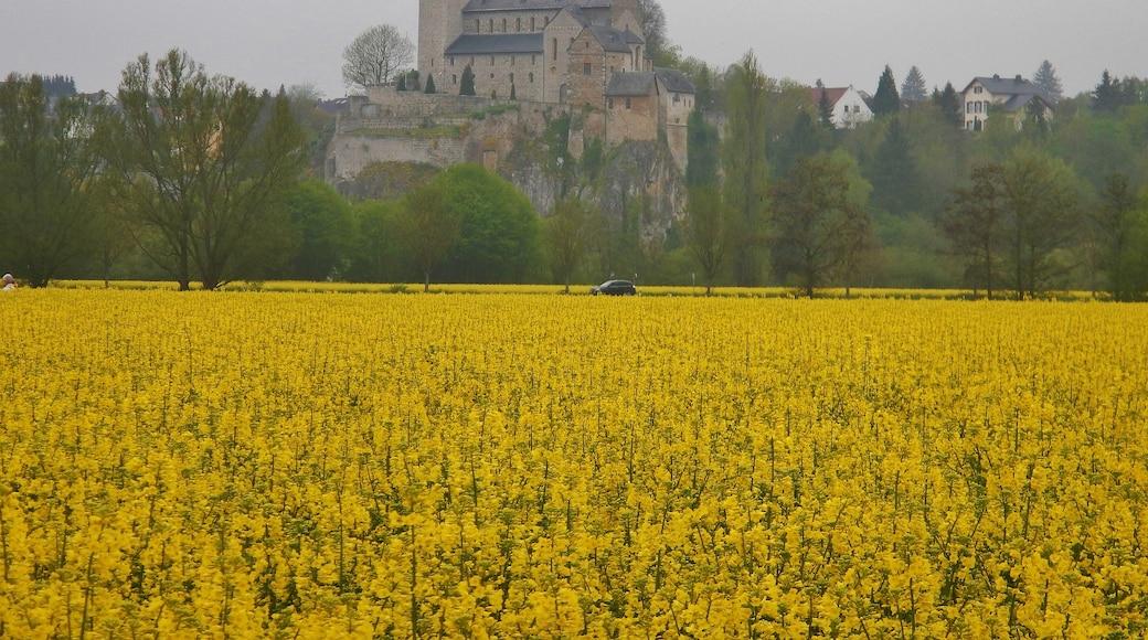 "Foto ""Limburg an der Lahn"" von qwesy qwesy (CC BY)/zugeschnittenes Original"