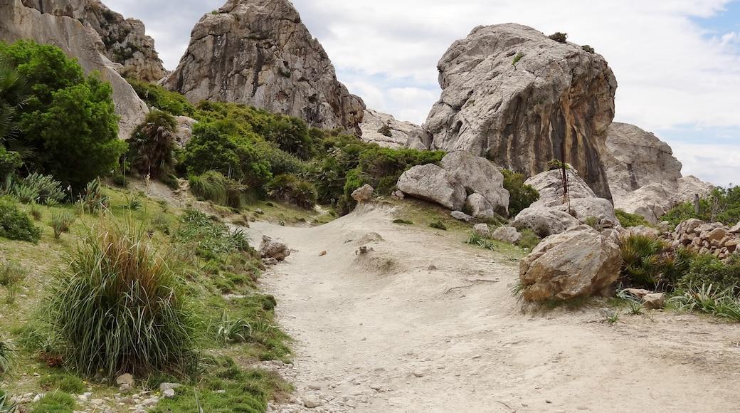 """Foto """"Vall de Bóquer"""" von Oltau (CC BY)/zugeschnittenes Original"""