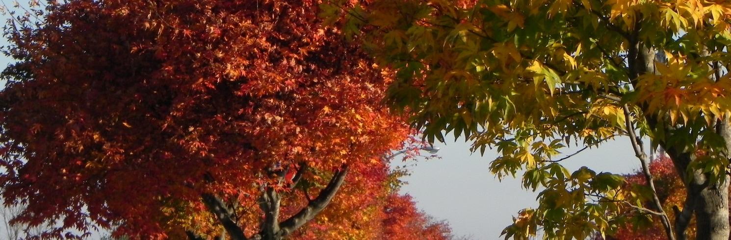 오비히로, 일본