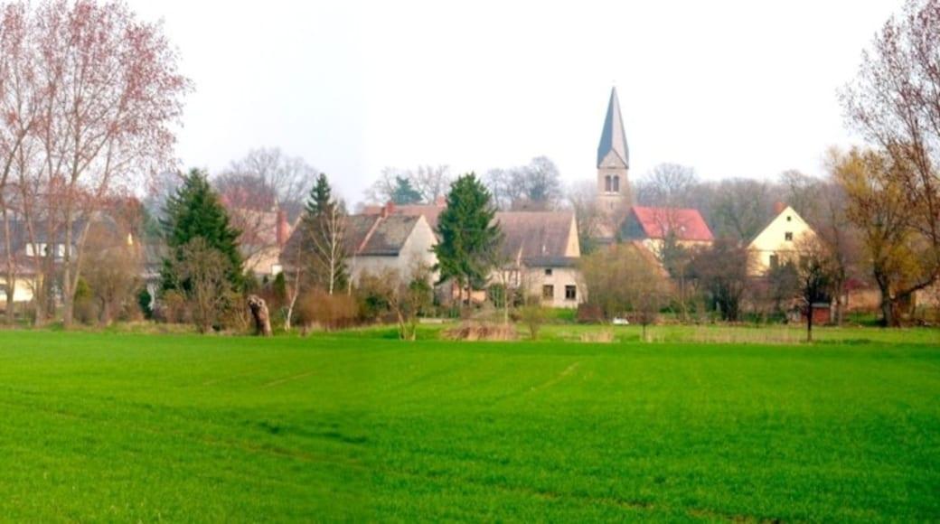 """Foto """"Bernburg"""" von silpfeiffer (CC BY)/zugeschnittenes Original"""