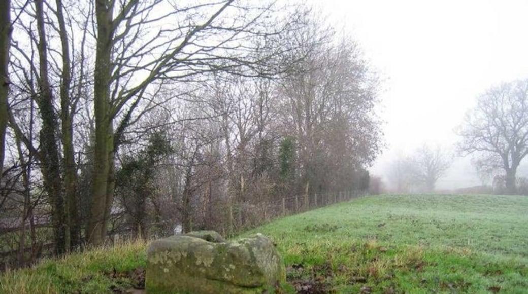«Stretton-on-Dunsmore», photo de Ian Coldicott (CC BY-SA) / rognée de l'originale
