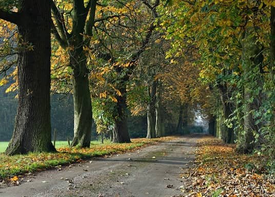Warrington, Großbritannien