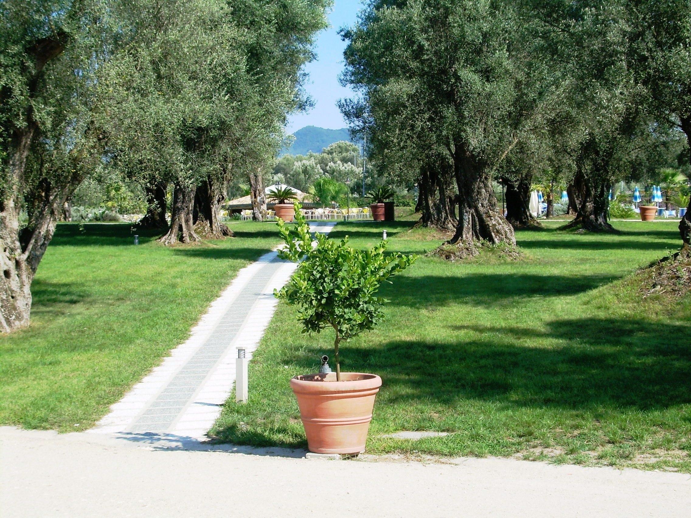 Cittanova, Calabrië, Italië