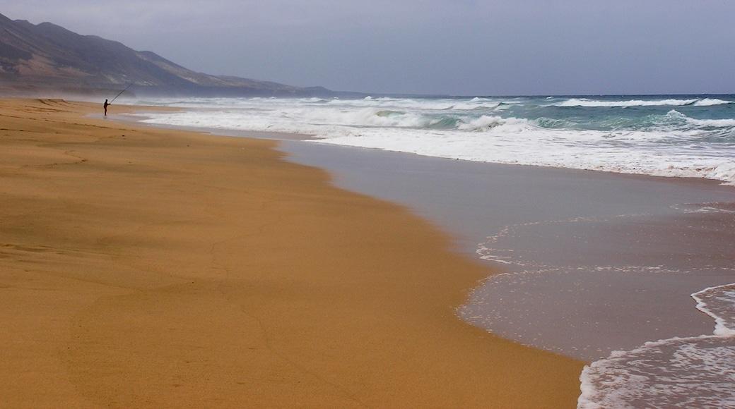 """Foto """"Playa de Cofete"""" de MrPepanos (CC BY) / Recortada de la original"""