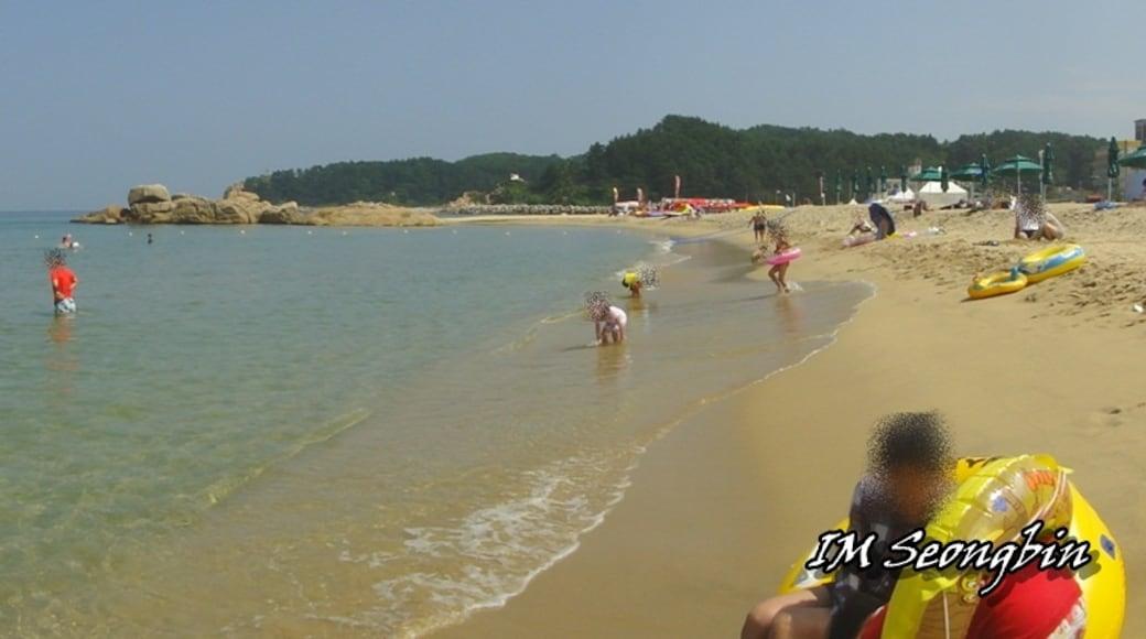 """Photo """"Hajodae Beach"""" by 골뱅이 (CC BY-SA) / Cropped from original"""