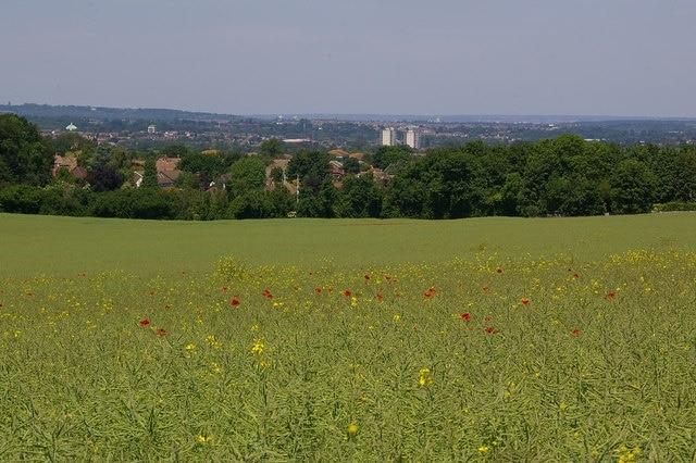 Orpington, England, United Kingdom