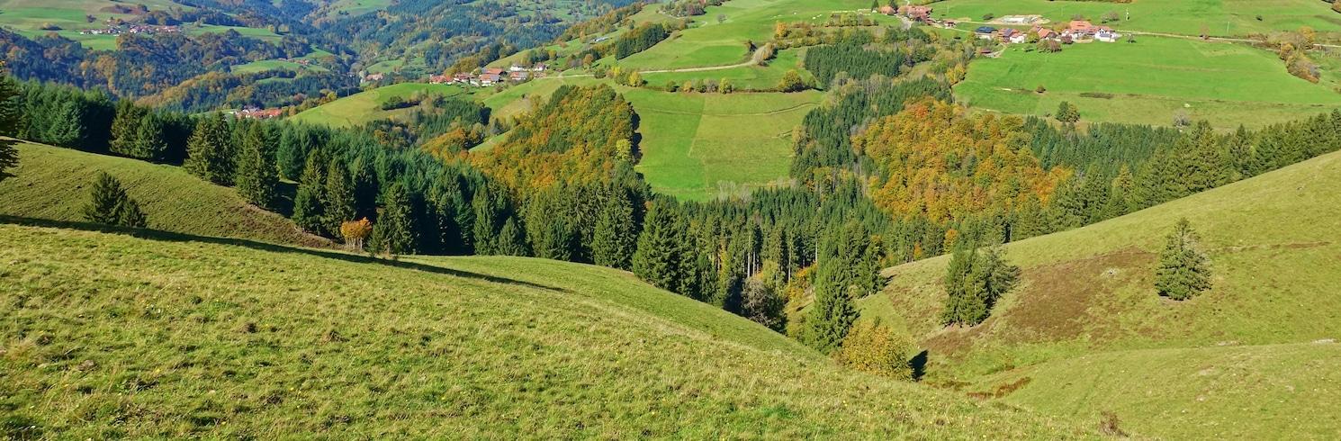Ehrsberg, Jerman