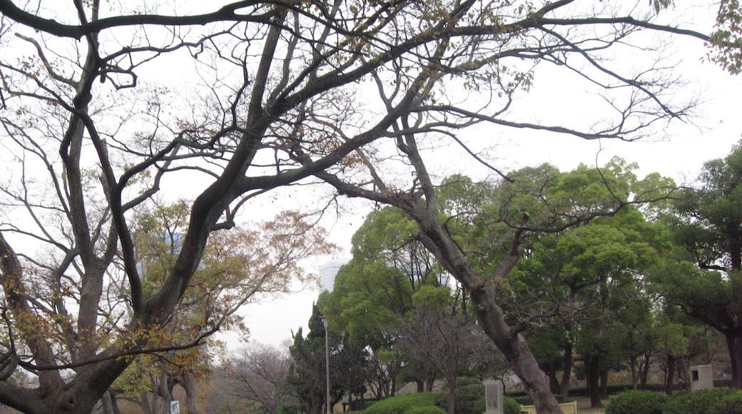 "Foto ""Parco del Castello di Osaka"" di Terence Ong (page does not exist) (CC BY) / Ritaglio dell'originale"