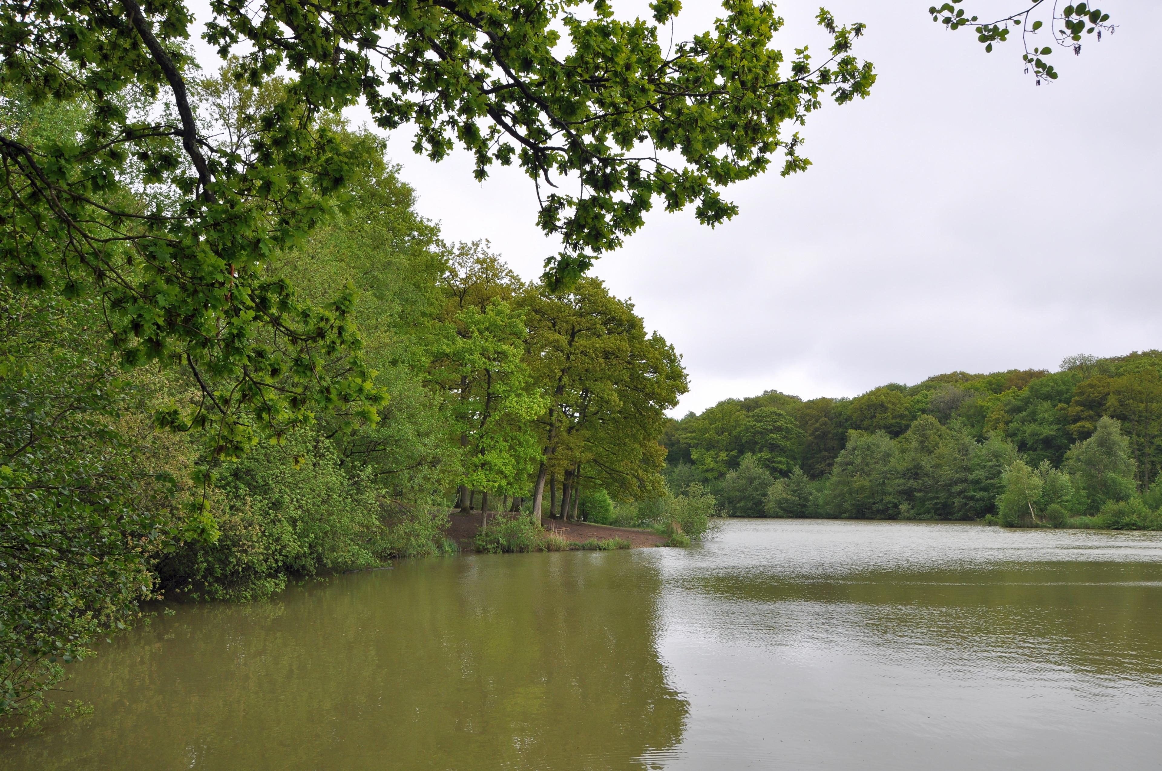 Arques, Pas-de-Calais (departement), Frankrijk