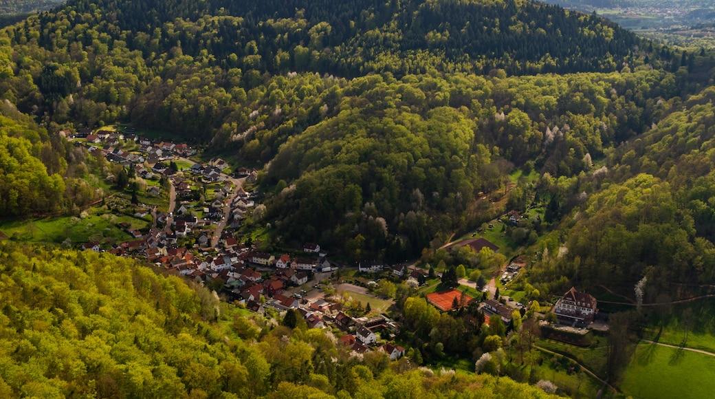 """Foto """"Wilgartswiesen"""" von F. Riedelio (CC BY-SA)/zugeschnittenes Original"""