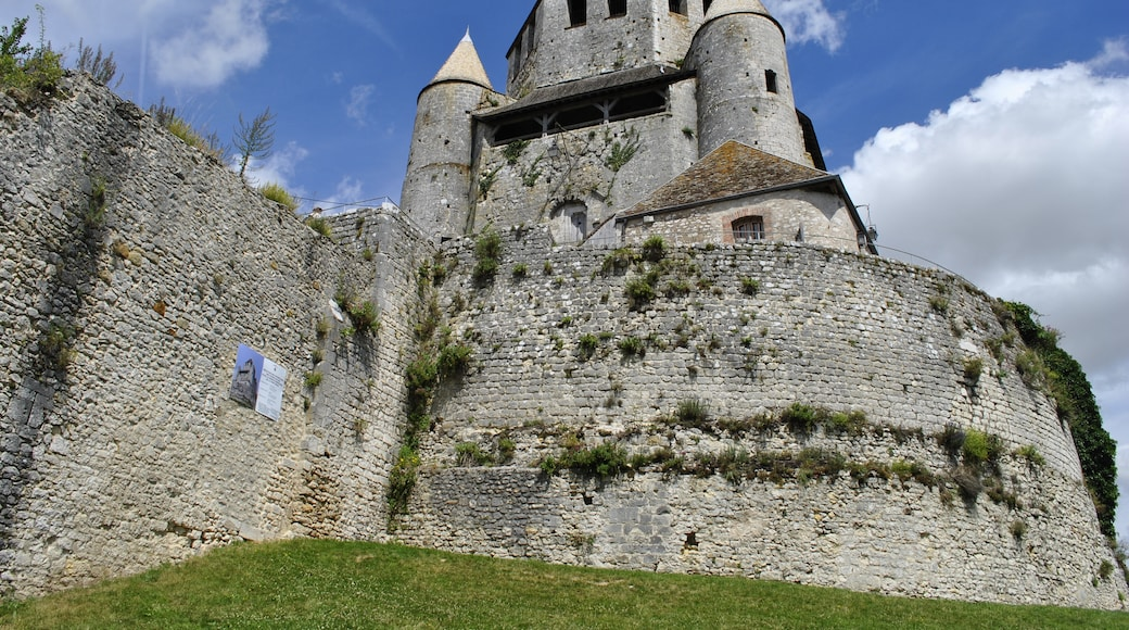 """Photo """"Provins"""" by Chapinoux (page does not exist) (CC BY-SA) / Cropped from original"""