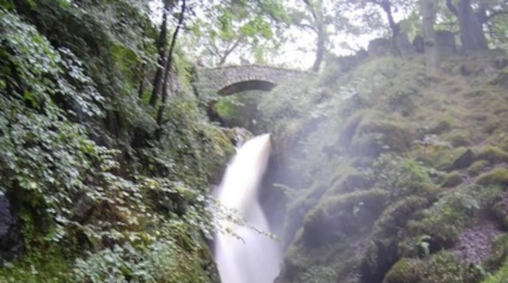 """Photo """"Aira Force"""" by Trevor Harris (CC BY-SA) / Cropped from original"""