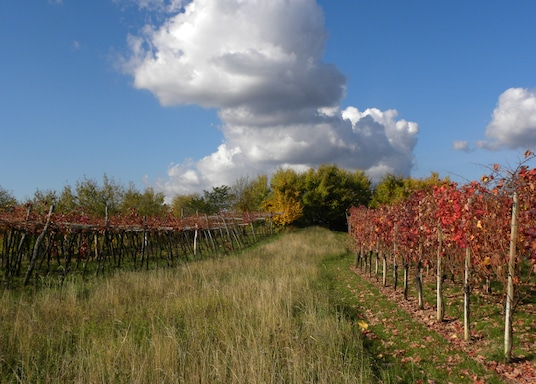 Sezana, Eslovenia