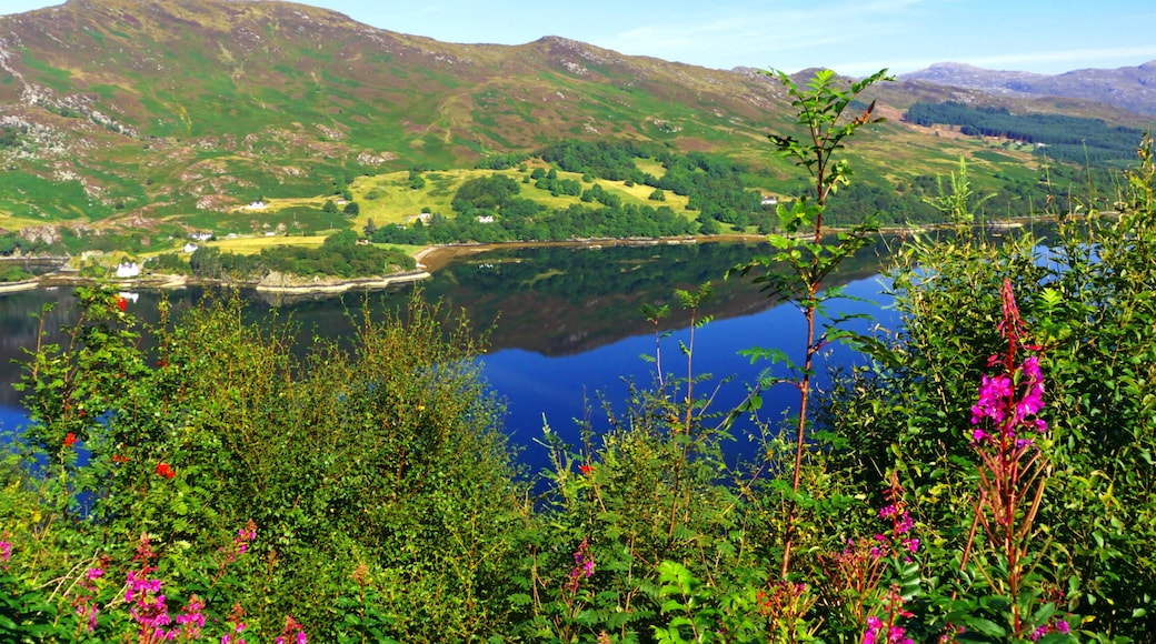 """Photo """"Loch Carron"""" by Alexander Reuss (CC BY) / Cropped from original"""