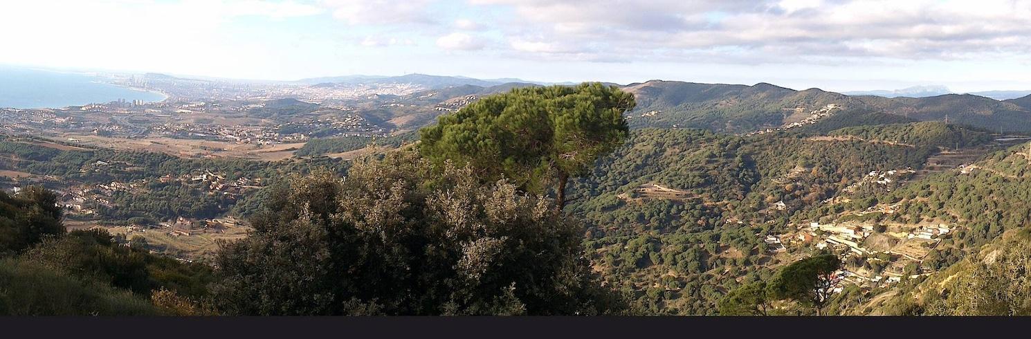 Teiá, Španielsko