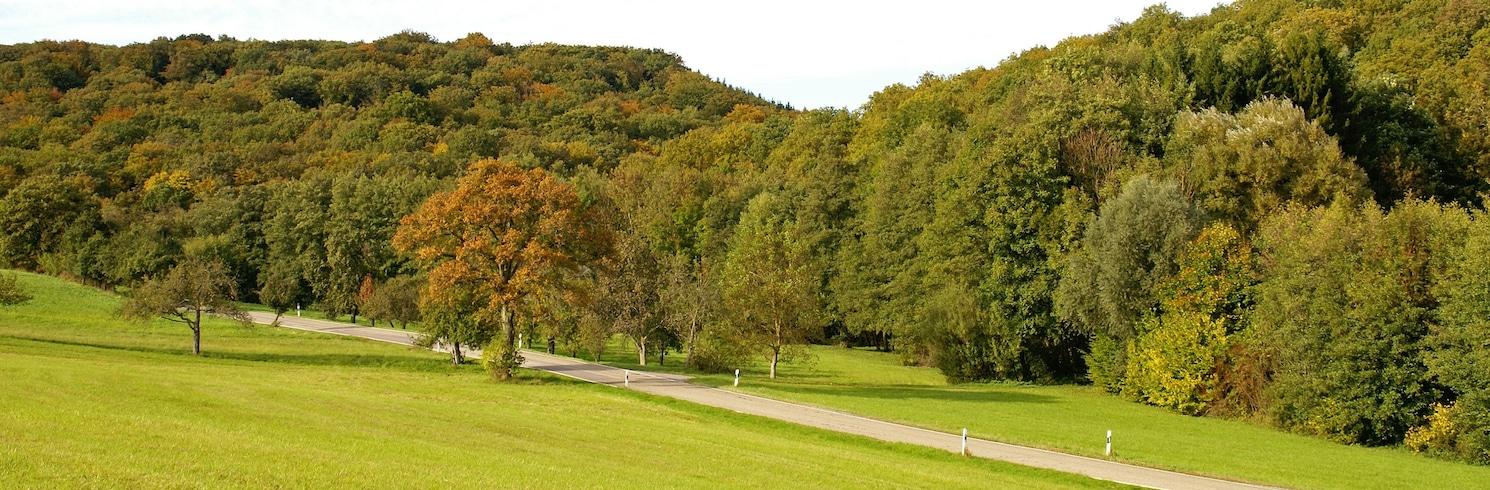 Sachsenheim, Germania