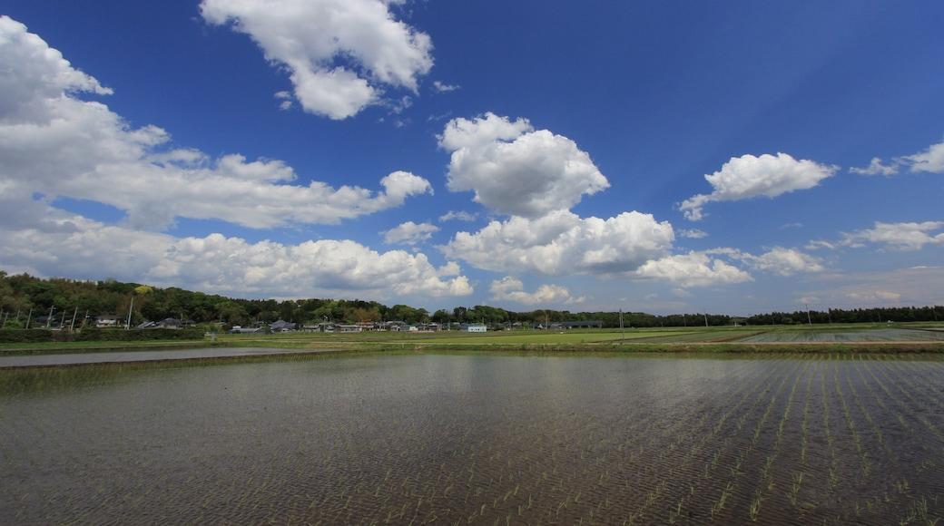 "Photo ""Tsuchiura"" by くろふね (CC BY) / Cropped from original"