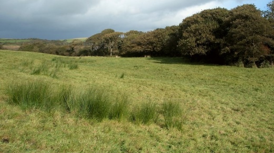"""Photo """"Kenfig Hill"""" by eswales (CC BY-SA) / Cropped from original"""