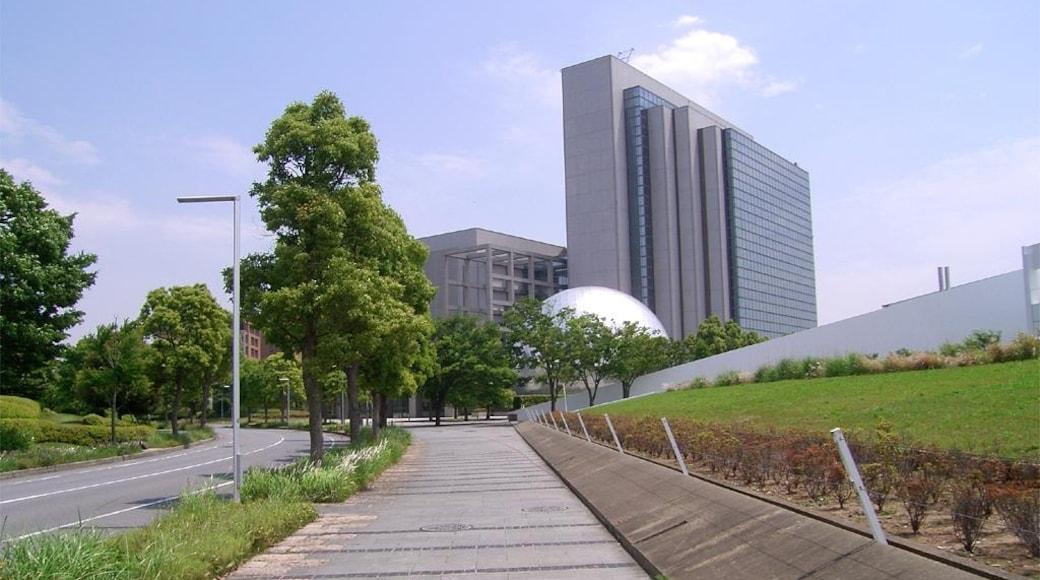 Bildet «Inzai» tatt av jofutsu (CC BY) / originalbilde beskjært