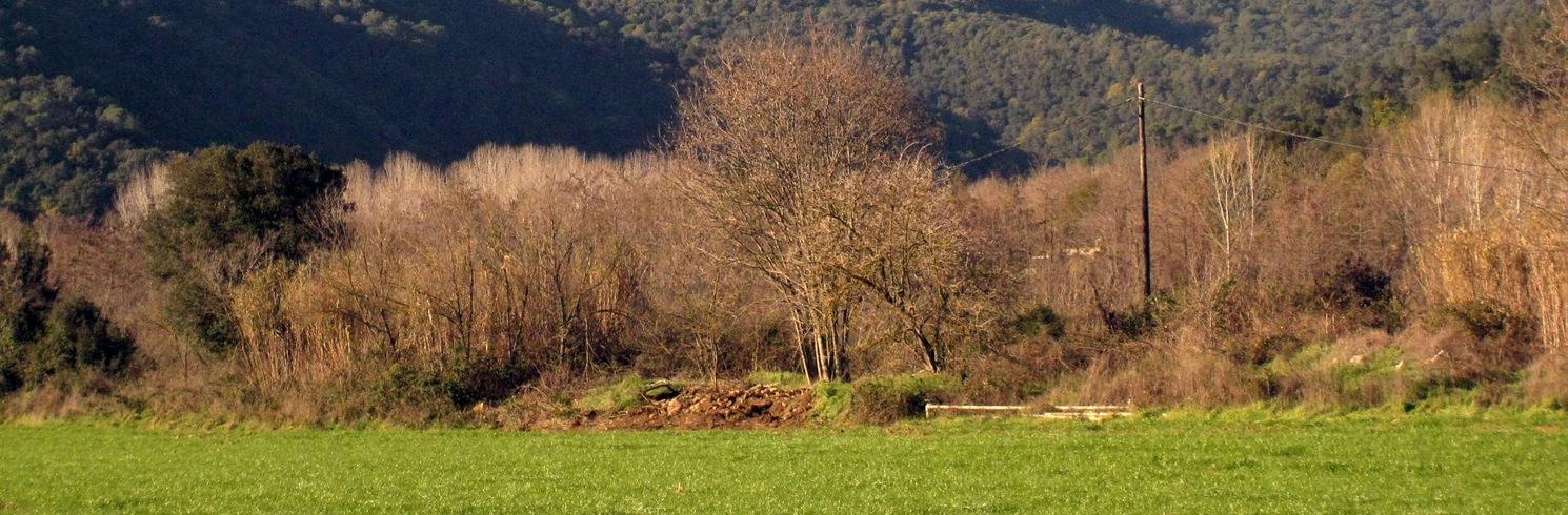 Sant Feliu de Buixalleu, Spain