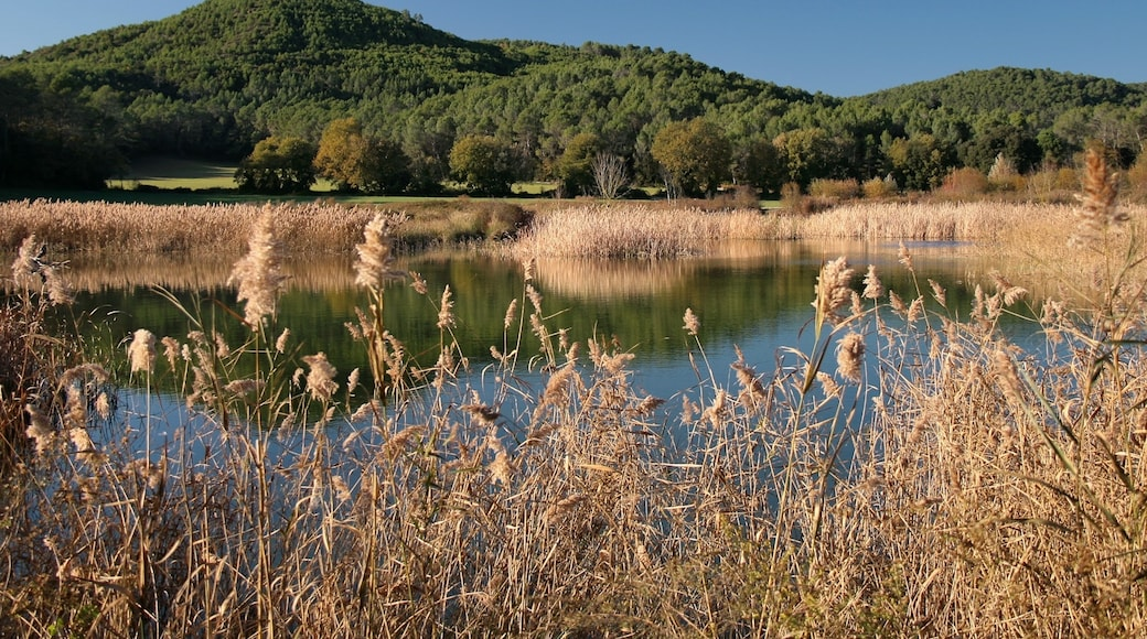 « Estunes Banyoles», photo de Jorge Franganillo (CC BY) / rognée de l'originale