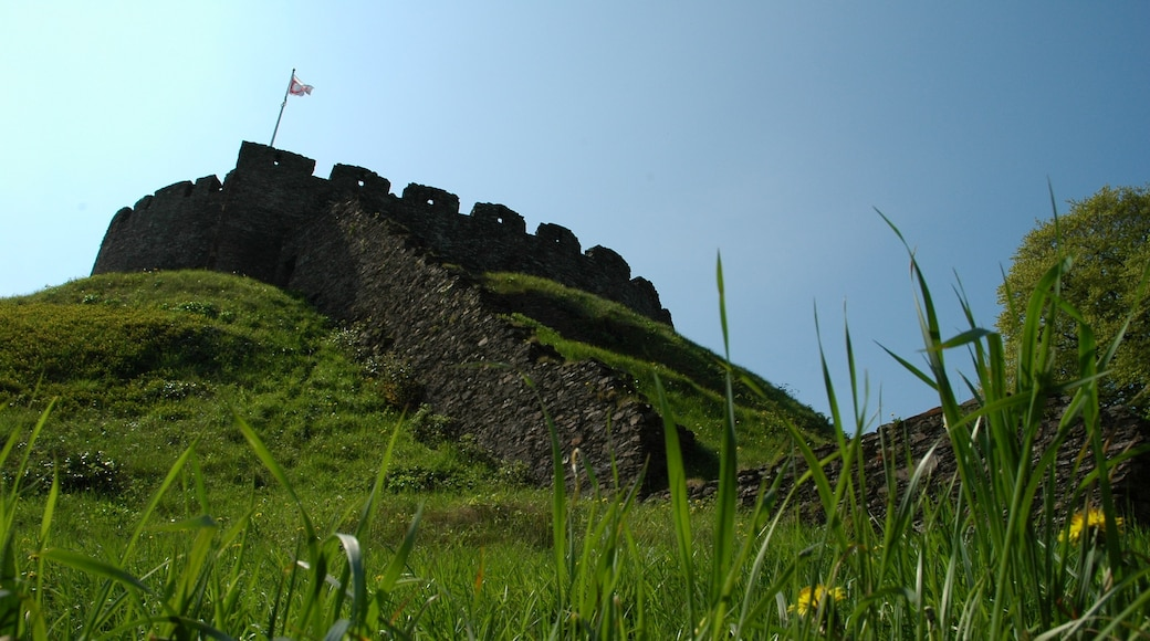 """Photo """"Totnes Castle"""" by tormentor4555 (CC BY-SA) / Cropped from original"""