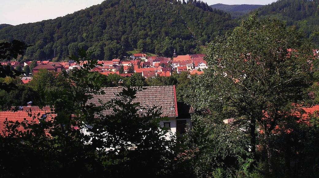 """Foto """"Bad Lauterberg"""" von TerraX_Bln (CC BY)/zugeschnittenes Original"""