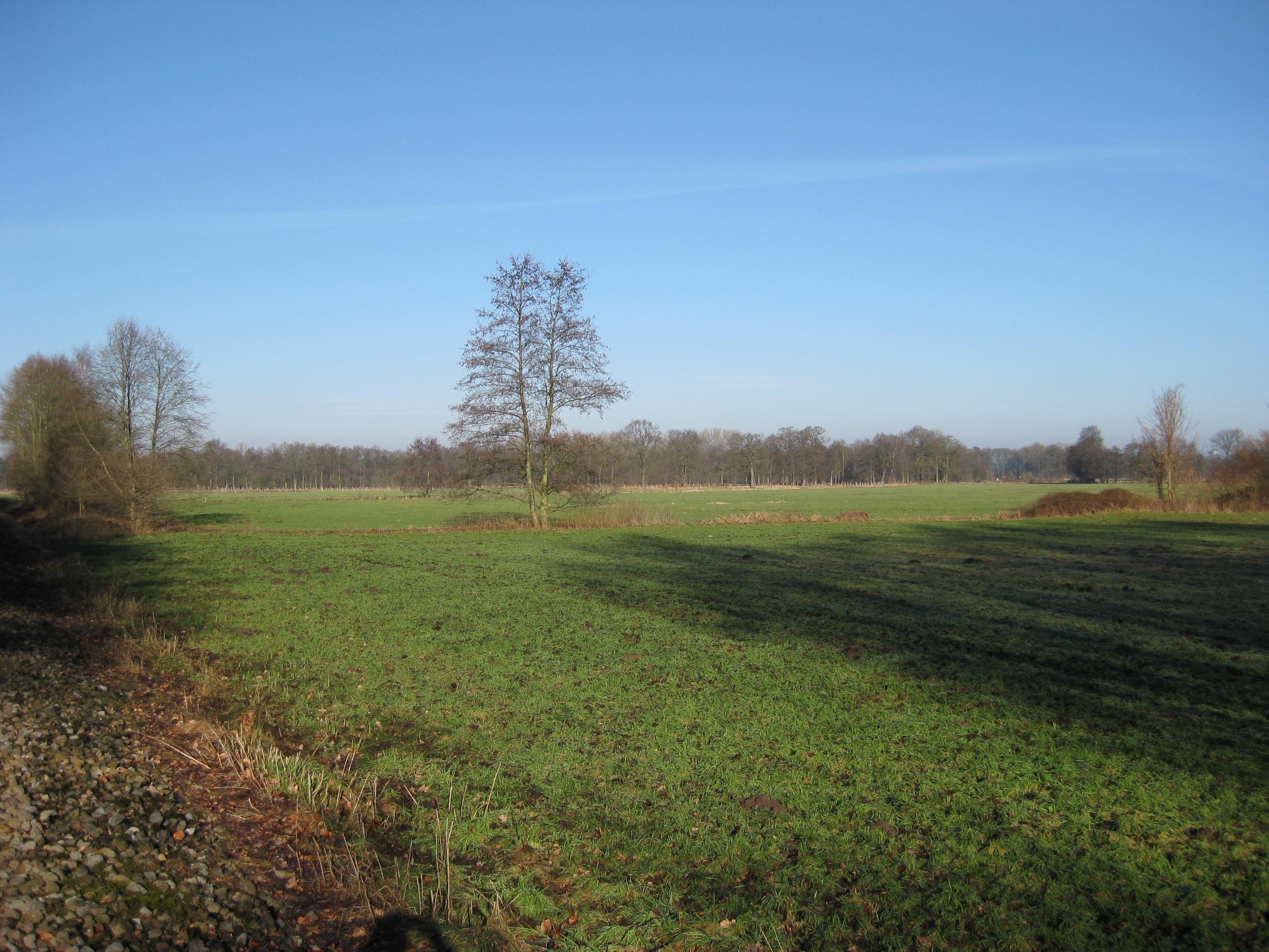 Versmold, Nordrhein-Westfalen, Deutschland