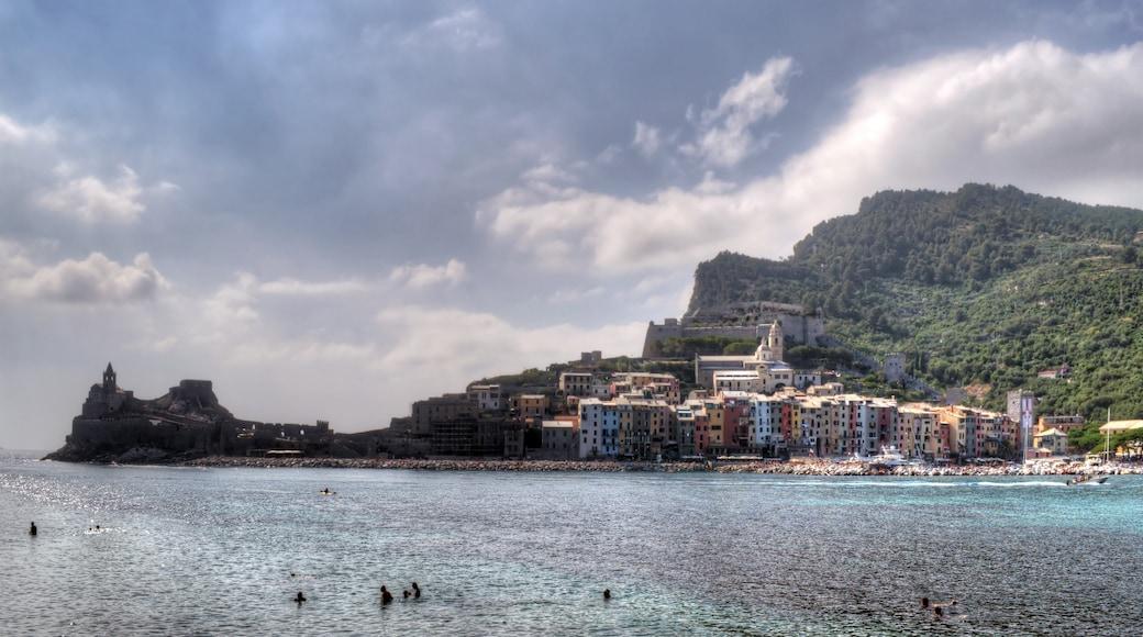 "Foto ""Insel Palmaria"" von GiorgioGaleotti (CC BY)/zugeschnittenes Original"