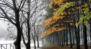Парк замку Леньяно