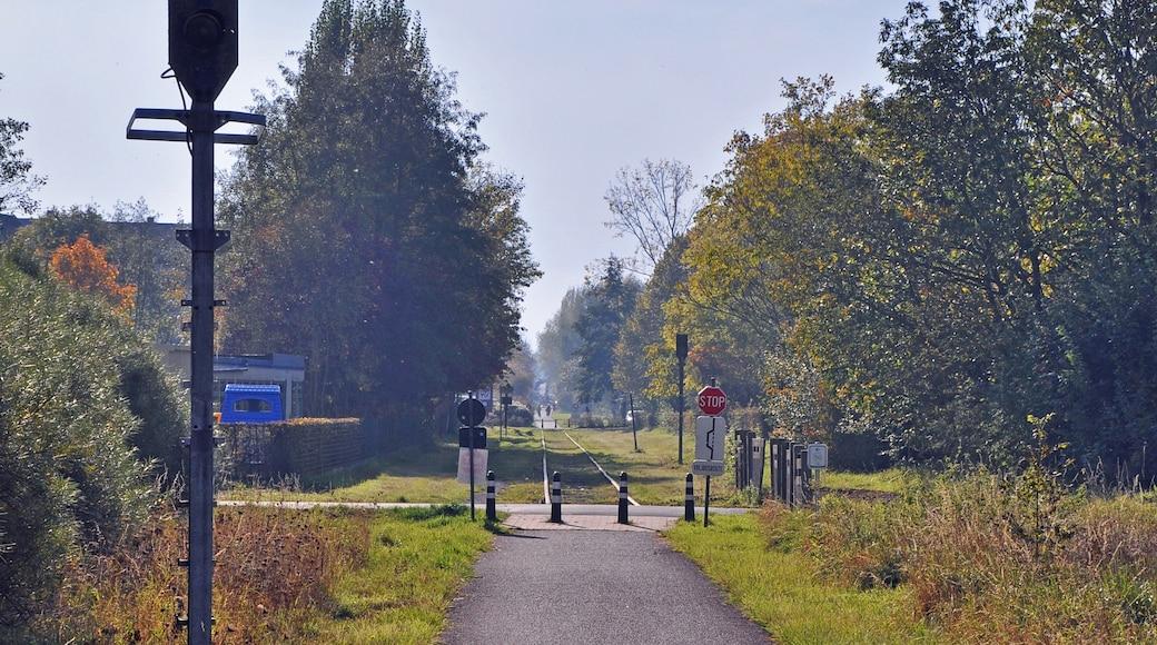 Foto 'Staden' van MJJR (CC BY) / bijgesneden versie van origineel