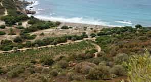 شاطئ كوكوريدوس