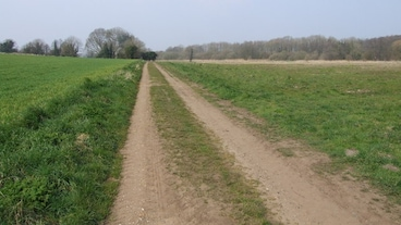 Snetterton/