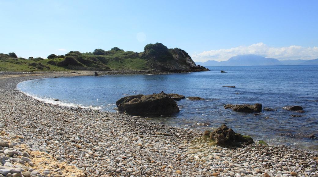 """Foto """"Algeciras"""" di Falconaumanni (CC BY-SA) / Ritaglio dell'originale"""