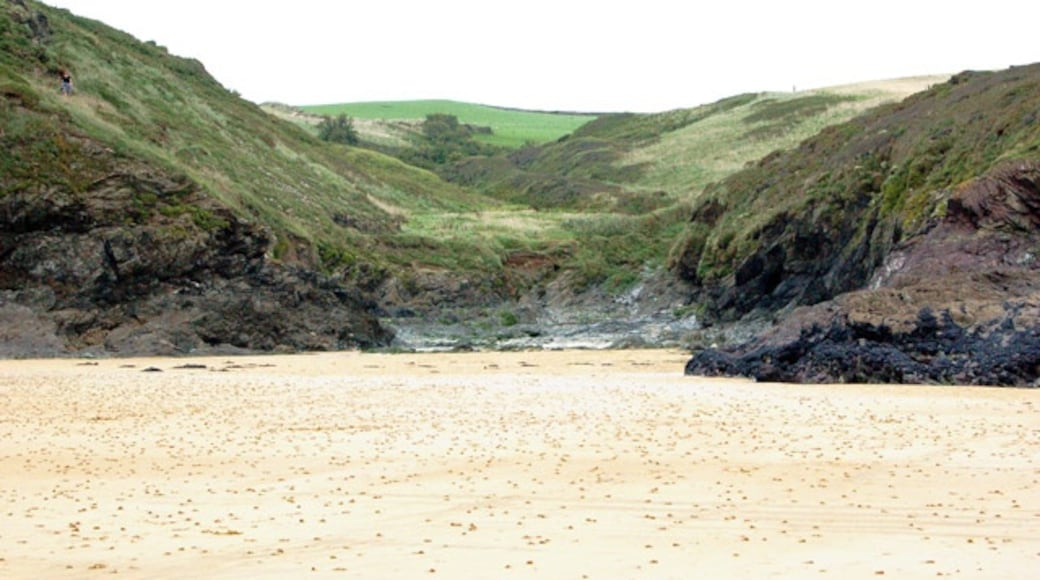 """Photo """"Polzeath Beach"""" by Andy F (CC BY-SA) / Cropped from original"""
