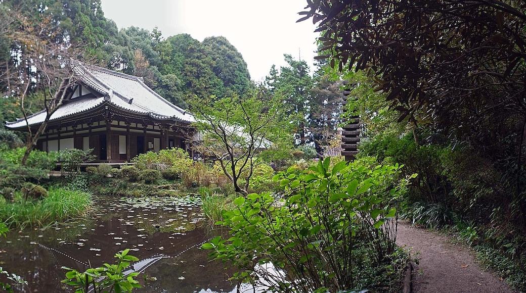"""Photo """"Kizugawa"""" by z tanuki (CC BY) / Cropped from original"""